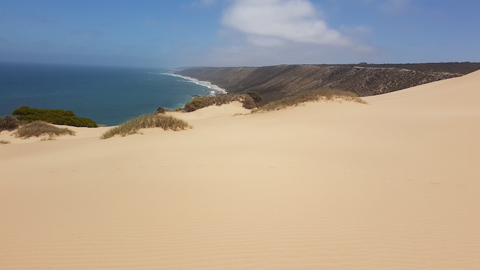 Northern end of the Horrocks dunes.