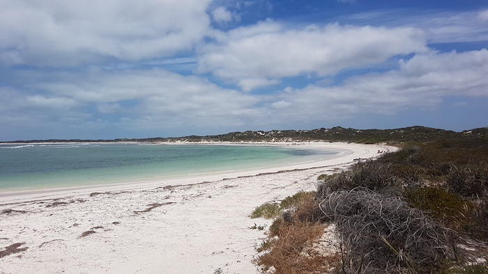Hangover Bay. Onshore winds had deposited copious amounts of seagrass, detracting from what is normally a spectacular, beautiful white beach. Hangover Bay is part of Nambung National Park and Jurien Bay Marine Park.