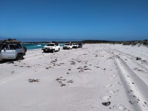 Our convoy on Starvation Boat Harbour Beach not long before it narrowed and angled.