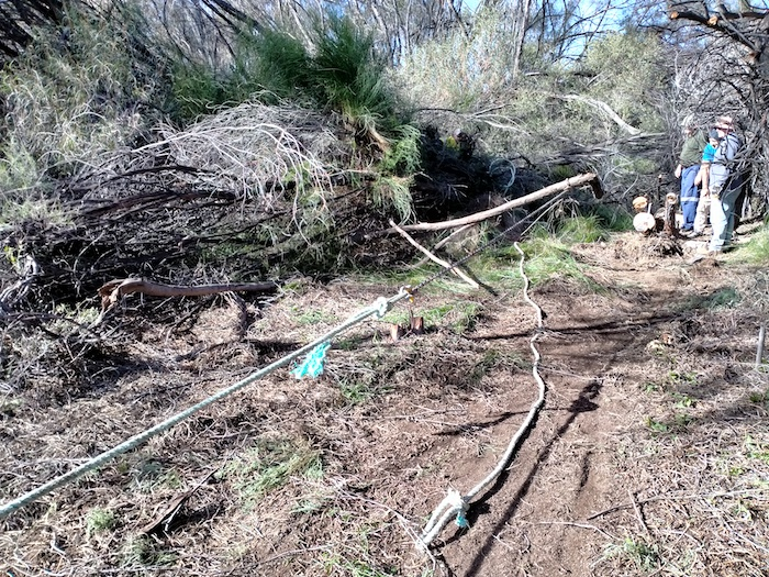 Towing logs and vegetation was an effective clearing technique.
